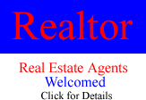 RE Agents